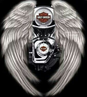 50 best images about HARLEY LOGOS on Pinterest | Angels ...