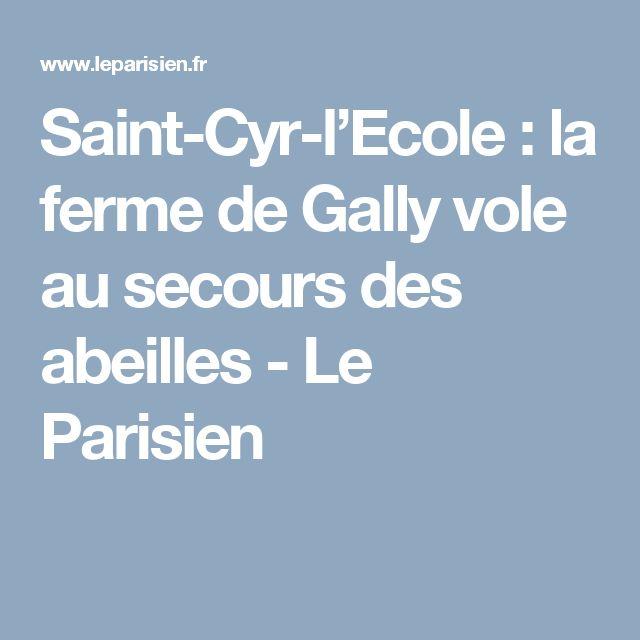 Saint-Cyr-l'Ecole : la ferme de Gally vole au secours des abeilles - Le Parisien