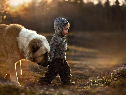 Freundlich sein bilmek Freundlich sein … Beide sind sehr getrennt ayrı!  Freundlich zu sein.