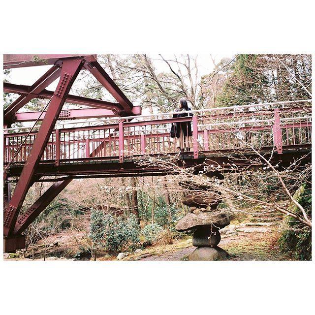 【markenne】さんのInstagramをピンしています。 《. Trip to Ishikawa 季節外れの桜が咲いてた . #filmofmarkenne . #加賀 #山中温泉 #あやとり橋 #桜 #灯篭 #街並み #風景 #スナップ #kaga #bridge #sakura #cherryblosom #lamp #cityscape #landscape #reco_ig #indies_gram #hueart_life #igersjp . #ライカ #Leica #LeicaCL #LeitzminoltaCL #フィルム #フィルム写真 #film #filmphotography #noktonclassic35mm #ektar100》