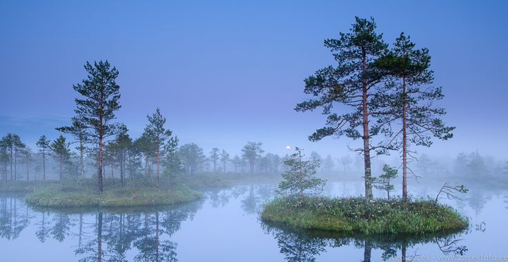 Sume suveõhtu rabalaugaste vahel / Smooth summer night in the bog. Estonia. By Sven Zacek. #Estonia