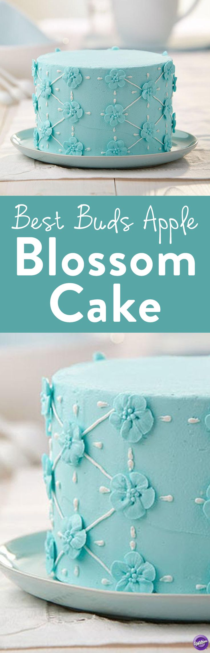 342 best Cakes Fina Needs to Make! images on Pinterest | Birthdays ...