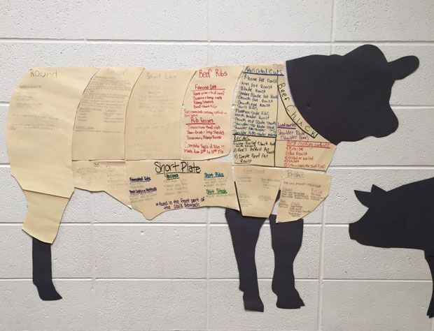Primal Cut Collaborative Poster Project | Family and Consumer Sciences | Agriculture | Kayla Pins