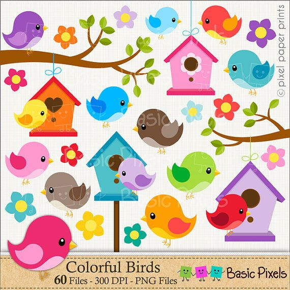 Bird clipart  Digital Clip Art  Personal and by basicpixels