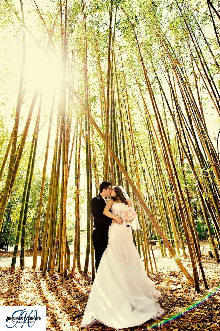 17 Best 1000 images about Wedding Ideas on Pinterest Gardens Wedding