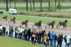 Course PMU : Onovo vainqueur à l'hippodrome de Pontchâteau