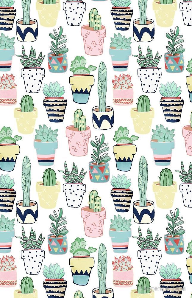 Cute Cacti in Pots by Tangerine-Tane