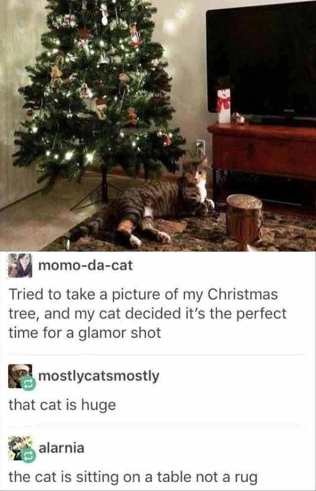 34 Funny Pictures Of The Day