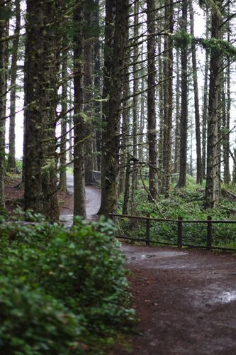 Best Oregon Hikes with Kids near Portland, Oregon