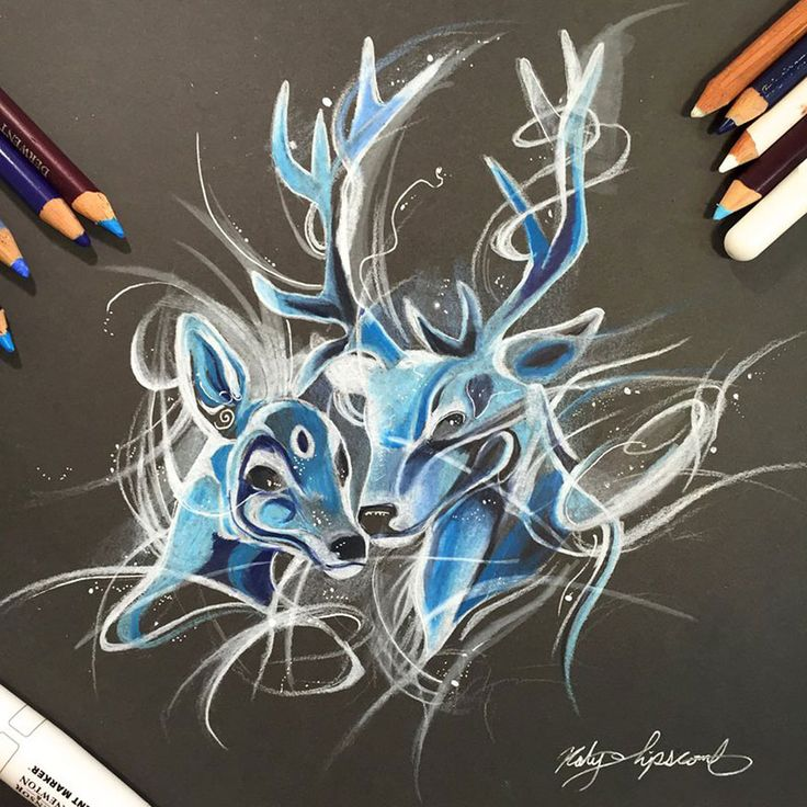 Wild Animal Spirits In Pencil And Marker Illustrations By Katy Lipscomb (Interview) | Bored Panda