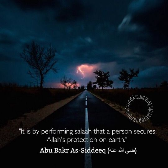 Learn about the wise man who gave us this quote.  Yasir Qadhi talks about the amazing Abu Bakr al-Siddiq, his life before Islam and his conversion story in this video.  Check it out here: