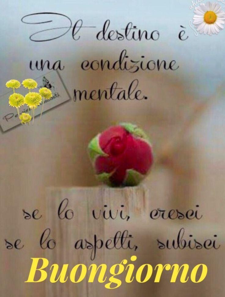 1114 best buongiorno amici images on pinterest for Top immagini buongiorno