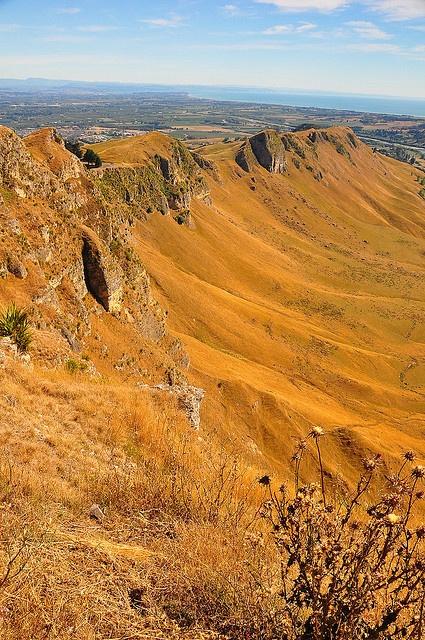Summer Barren Hills of Havelock North, Hawke's Bay, North Island, New Zealand