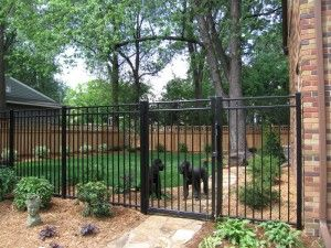 Wrought iron fencing with black powder coat for low maintenance provides security A 6 foot wooden fence was incorporated into the design along the side yard to give privacy. A self-closing gate is also included in the wrought iron section in this project. Design by Steve Wilde.
