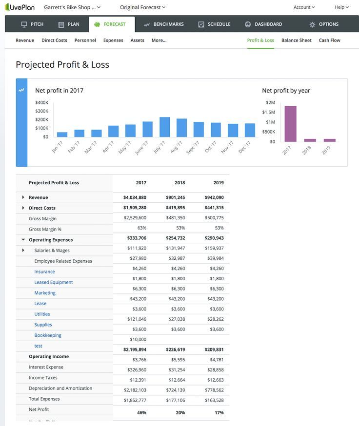 The Key Elements of the Financial Plan Profit and loss
