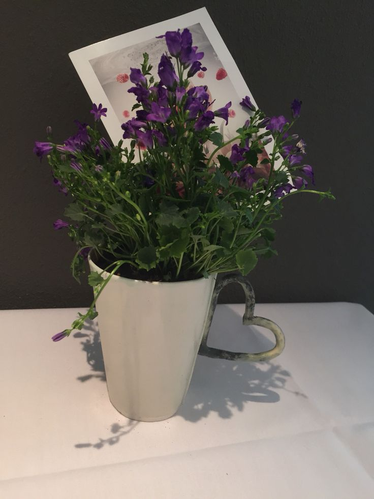 Ceramic cup as a flowerpot with a heart handle