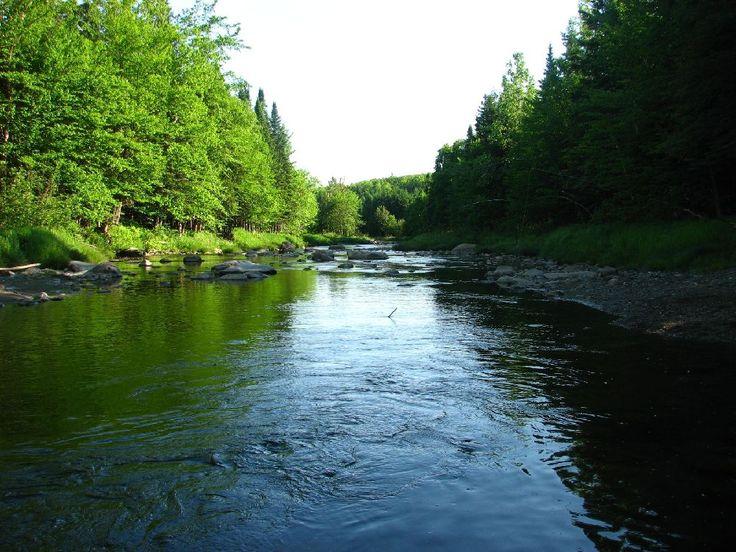 La rivière Osgood qui longe le parc municipal de #Kinnearsmills #regionthetford #chaudiereappalaches