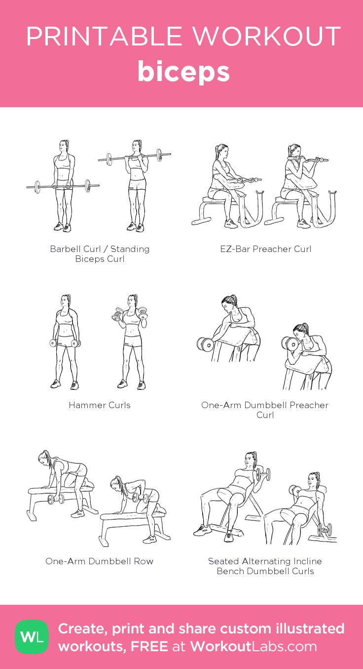 The secret to building sexier biceps for women and men biceps: my visual workout created at WorkoutLabs.com • Click through to customize and download as a FREE PDF! #customworkout