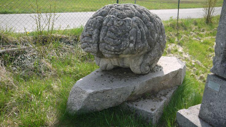 """Scultura """"Cervello"""" in pietra - http://achillegrassi.dev.telemar.net/project/scultura-cervello-in-pietra/ - Splendido esempio di scultura,in Pietra biancadi Vicenza, realizzata in occasione del simposio Nantopietra tenutosi a Nanto (Vi) nel 1995. Autore:  Massimo Zarantonello(Italia)  Dimensioni:  130cm x 85cm x 95cm"""