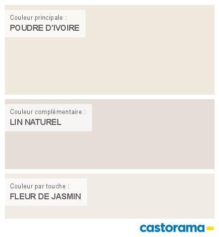 Castorama Nuancier Peinture - Mon harmonie Peinture POUDRE D'IVOIRE mat de DULUX VALENTINE Le mat