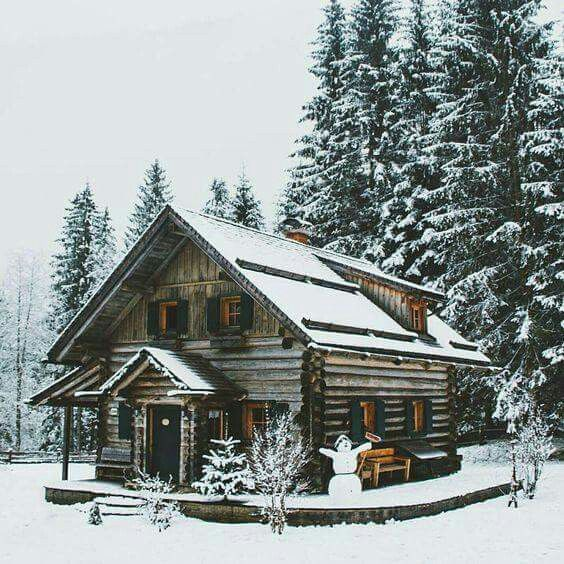 Log Home Exterior Ideas: 25+ Best Ideas About Log Cabin Exterior On Pinterest