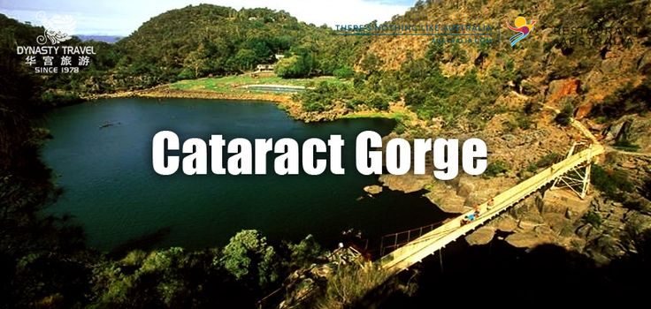 Cataract Gorge Reserve, known locally as the Gorge, is a unique natural formation within a two-minute drive of central Launceston - a rare natural phenomenon in any city.  In an easy 15 minutes, you can walk from central Launceston along the banks of the Tamar River into the Gorge and from here follow a pathway originally built in the 1890s along the cliff face looking down onto the South Esk River.  The First Basin on the southern side has a cafe and a swimming pool surrounded by bushland…