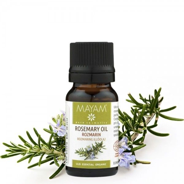 Uleiul esenţial de rozmarin este un ulei cu miros proaspăt, grozav pentru stimularea creierului, ce contribuie la îmbunătăţirea memoriei, rezolva probleme ale tractului respirator, muşchi rigizi, răceală,