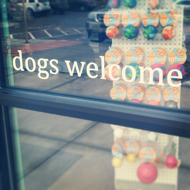 Pet Stores Sell Dogs Sioux Falls Sd