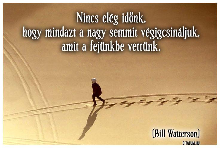 Bill Watterson idézete tetteink jelentéktelenségéről.