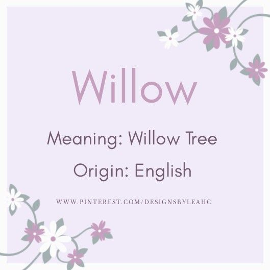 Baby Girl Name: Willow. | Meaning: Willow Tree. | Origin ...