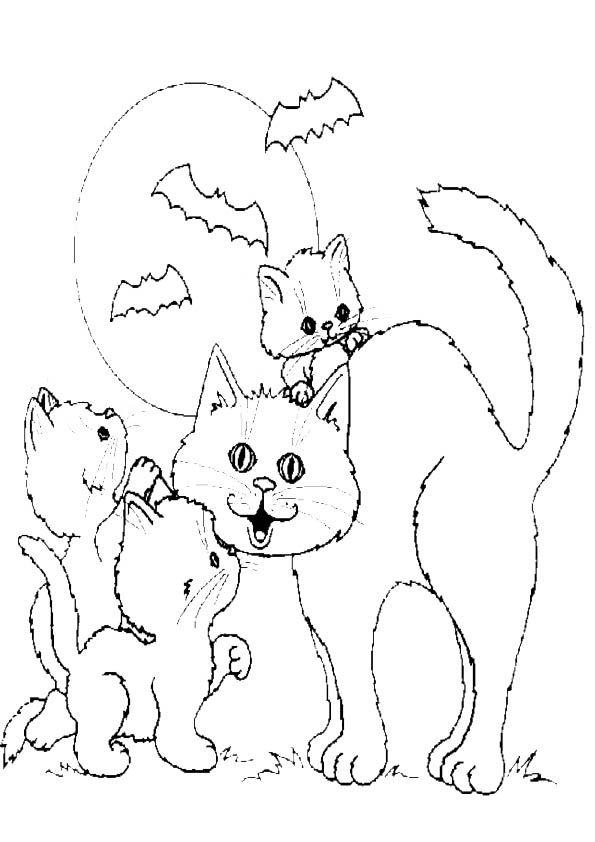 malvorlagen ausmalbilder  ausmalbilder katzen