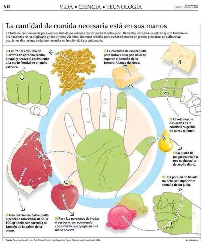 ¿Cuánto debo consumir de cada tipo de alimento?  Esta imagen es una dinámica guía de como comer de manera saludable en cada comida.