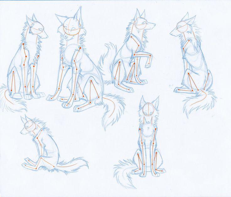 HowToDrawWolves: SittingPoses by Kimai.deviantart.com on @deviantART