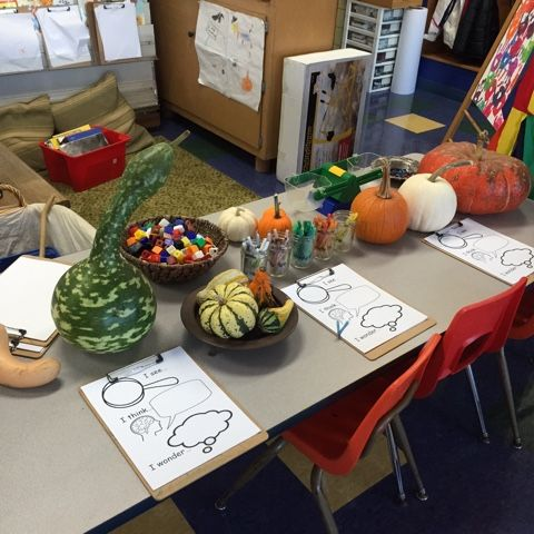 I set out some areas to look closer at pumpkins, gourds and apples since these are things we are seeing a lot of at this time of year! The kids started exploring and documenting what they noticed righ