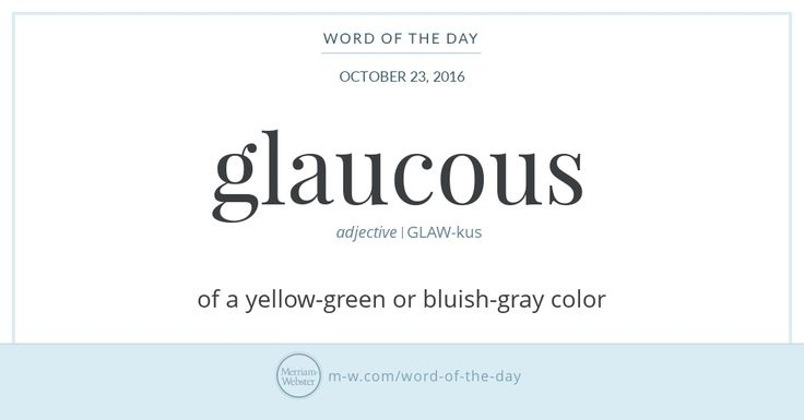 Glaucous came to English—by way of Latin glaucus—from Greek glaukos, meaning 'gleaming' or 'gray,' and has been used to describe a range of pale colors from a yellow-green to a bluish-gray. The word