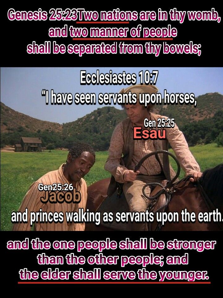 Christ is BLACK according to the Bible. The Hebrew Israelites of the Bible are the black slaves of the trans Atlantic Slave Trade and the native american (North & South) Indians (originally black before mass mixing WITH other Nations) living under ALL the curses of deuteronomy. Esau/Edom are the so called white people. It is all in the Bible. #HebrewIsraelites spreading TRUTH. GatheringofChrist.org