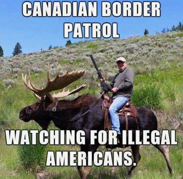On a moose...hahaha