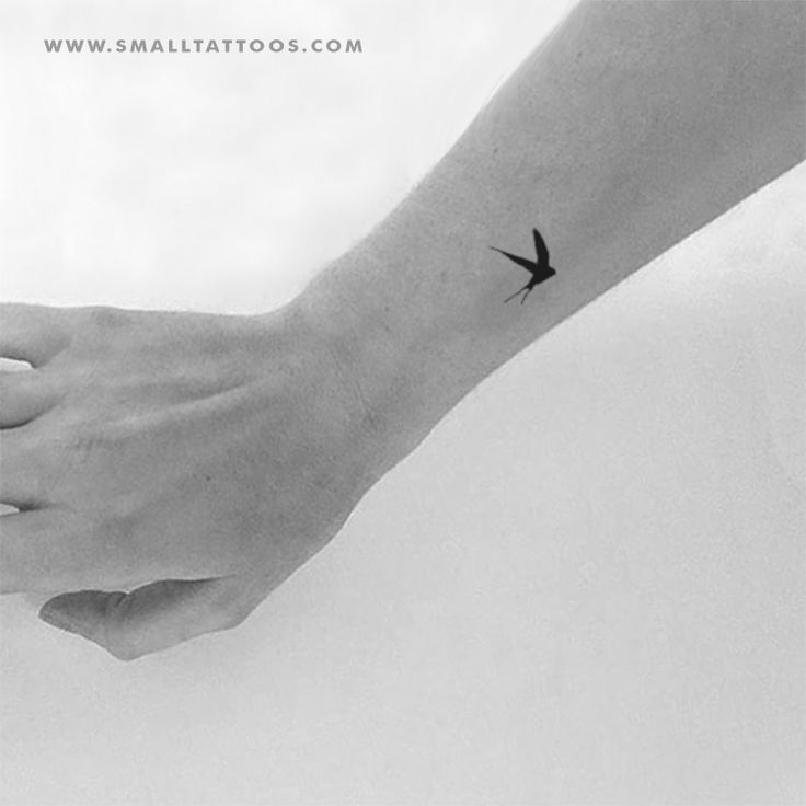 Small Swallow Temporary Tattoo (Set of 4)  – Tattoo