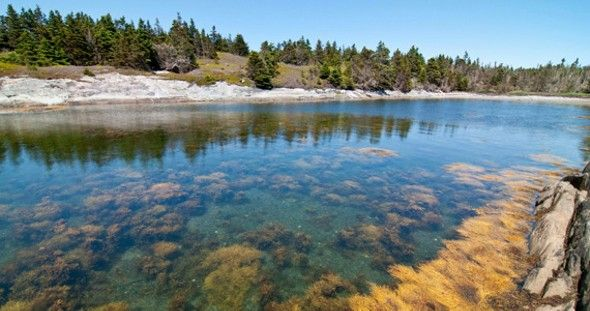 White sand beaches and turquoise water aren't far from downtown Halifax. Located an hour from the city are nearly 300 islands stretching along the eastern...