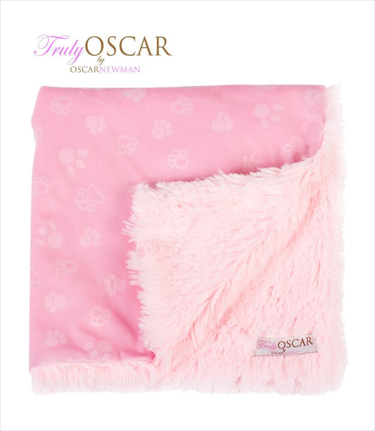 Sweet Dreams Dog Blanket