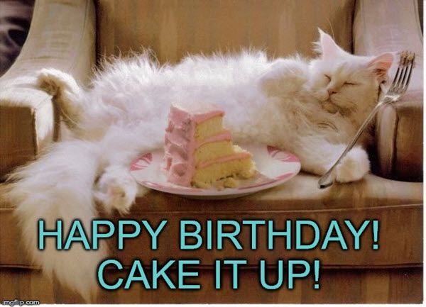 35 Cat Birthday Memes That Are Way Too Adorable Cat Birthday Memes Cat Birthday Funny Cat Birthday