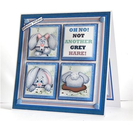 NOT ANOTHER GREY HARE 7.5 Humorous Quick Layer Card Mini Kit - CUP863212_68 | Craftsuprint