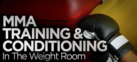 how to begin weight training