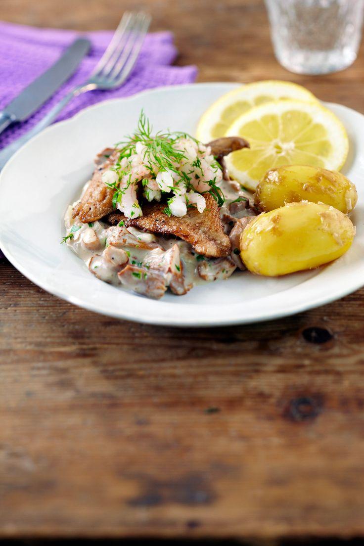 Ahvenfileitä, kantarellimuhennosta ja katkarapuja   K-ruoka #sienet #kala #kesä
