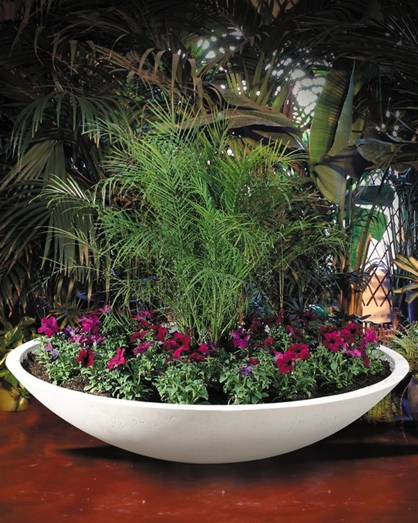 Wok Planters Planters Around Pool Succulent Garden Indoor Easy Garden
