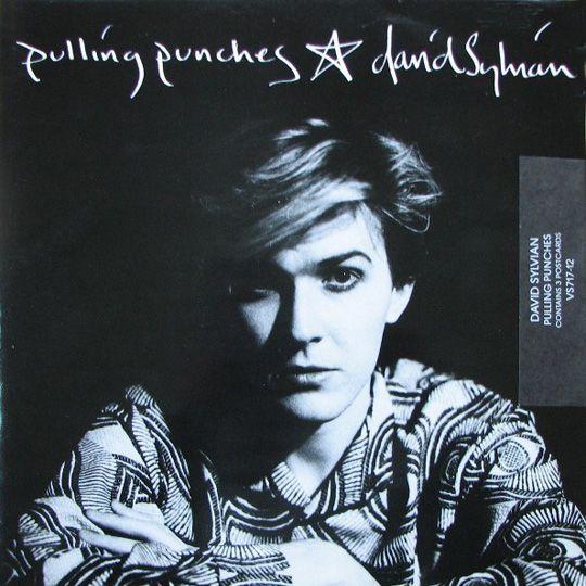 "David Sylvian  ""Pulling Punches"" 1984 | Photographer Yuka Fujii | Cover design David Sylvian."