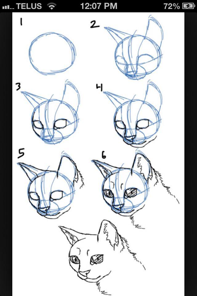 1000 ideer om enkle tegninger p pinterest oppl ring i for Fun to draw cat