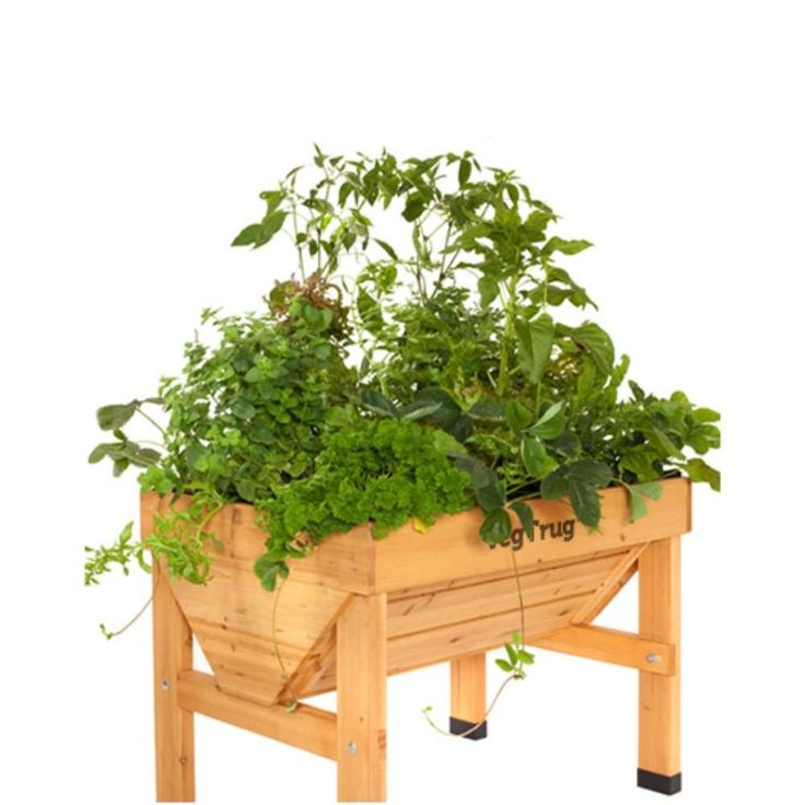 Growing Vegetables In Urban Planters: VegTrug Raised Garden Table