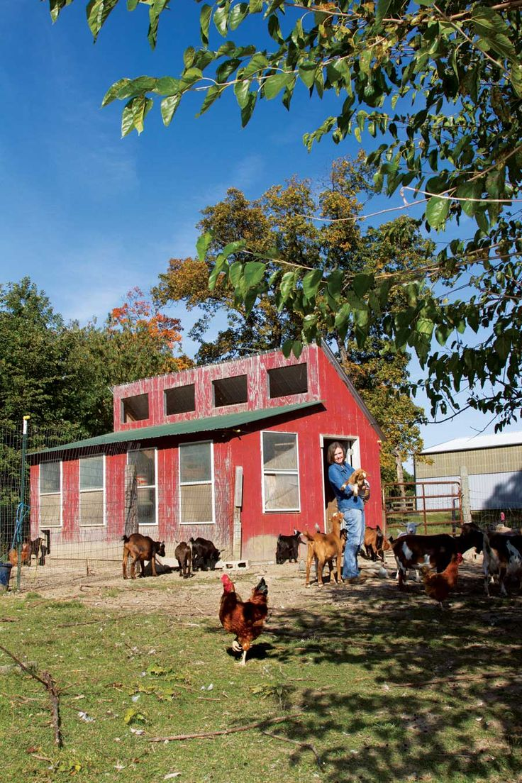 Guide to Self-Sufficient Living: Advice from Nine Modern Homesteaders