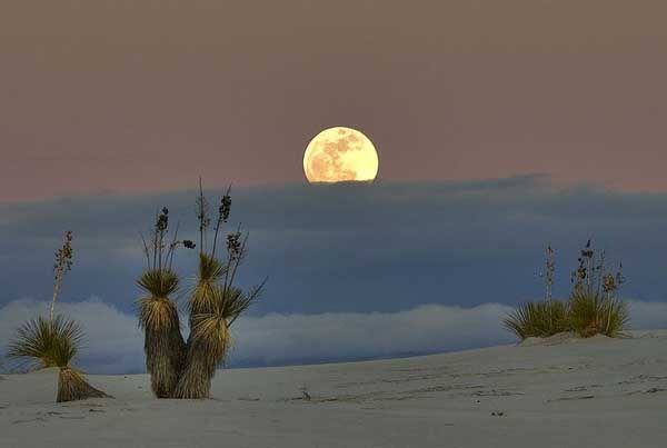 Full Moon Bike Rides --  White Sands - New Mexico - a Different Type of Desert : tourismontheedge